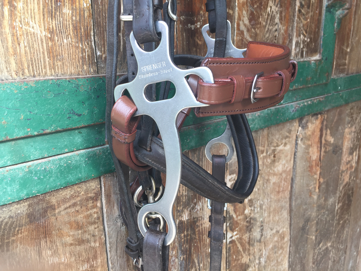 A hackamore hung up on a hook in a stable
