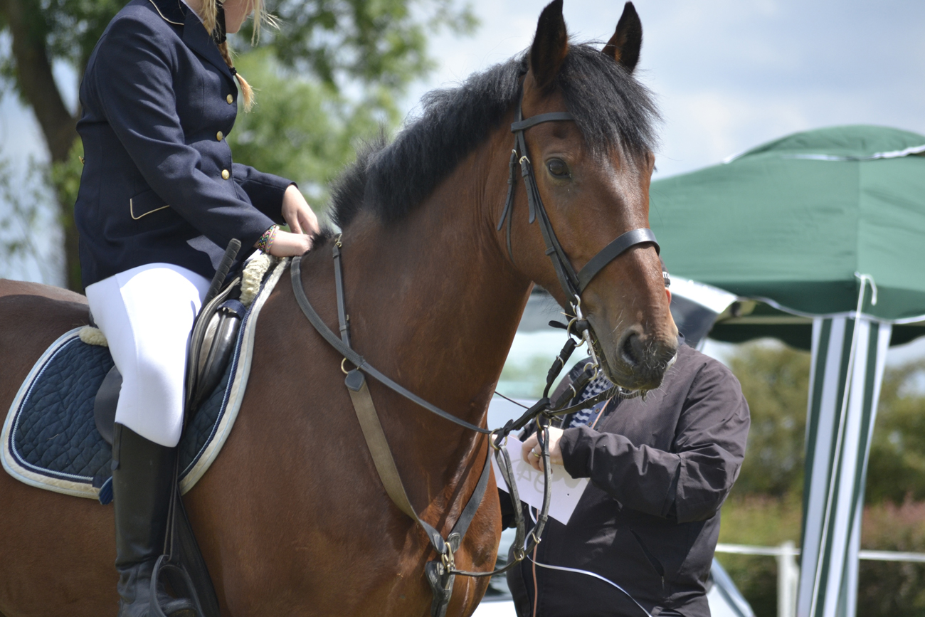 A dressage horse and rider competing
