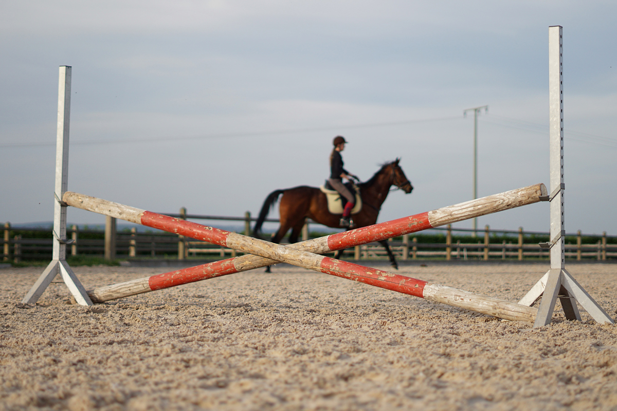 A horse and rider trotting behind a cross pole fence